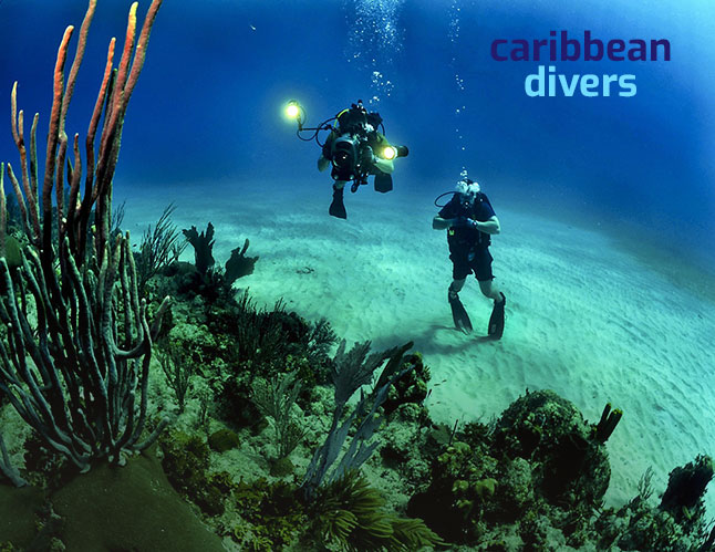 Caribean Divers